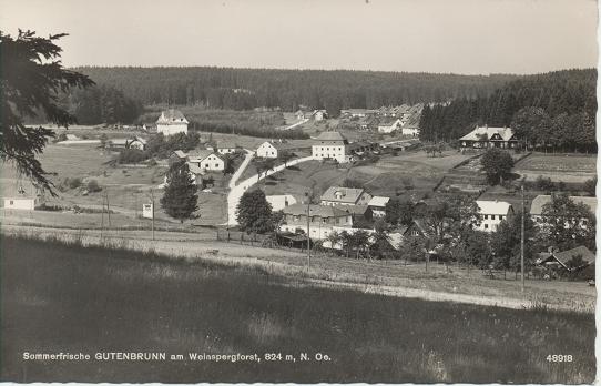 Sommerfrische Gutenbrunn am Weinspergforst 894m N.Oe.