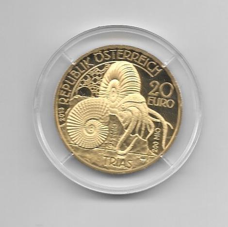 20 EURO Silber 2013 Trias Leben im Wasser Lebendige Uhrzeit 24 Karat Vergoldet